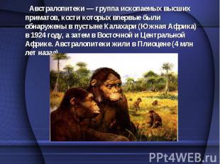 Австралопитеки — группа ископаемых высших приматов, кости которых впервые были о