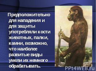 Предположительно для нападения и для защиты употребляли кости животных, палки, к