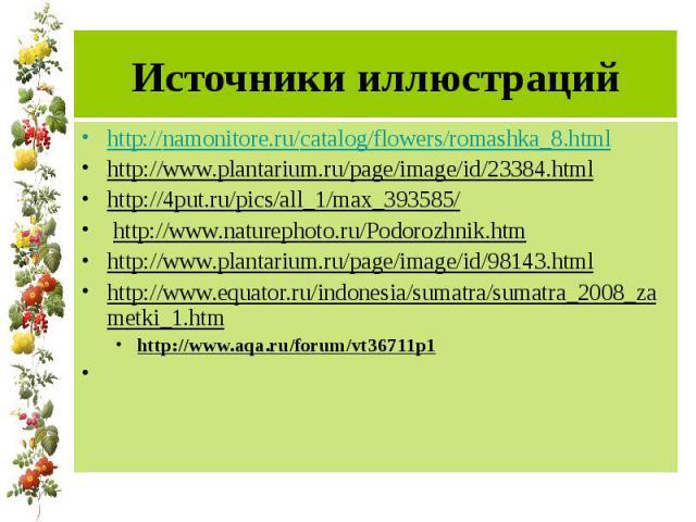 Источники иллюстраций http://namonitore.ru/catalog/flowers/romashka_8.html http://www.plantarium.ru/page/image/id/23384.html http://4put.ru/pics/all_1/max_393585/ http://www.naturephoto.ru/Podorozhnik.htm http://www.plantarium.ru/page/image/id/98143…