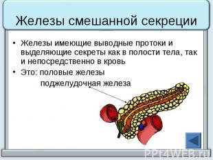 Железы смешанной секреции Железы имеющие выводные протоки и выделяющие секреты к