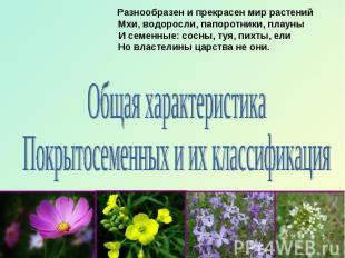 Разнообразен и прекрасен мир растений Мхи, водоросли, папоротники, плауны И семе