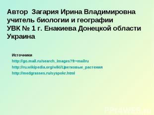 Автор Загария Ирина Владимировна учитель биологии и географии УВК № 1 г. Енакиев