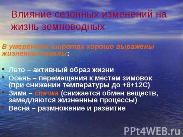Влияние сезонных изменений на жизнь земноводных В умеренных широтах хорошо выражены жизненные циклы: Лето – активный образ жизни Осень – перемещения к местам зимовок (при снижении температуры до +8+12С) Зима – спячка (снижается обмен веществ, замедл…