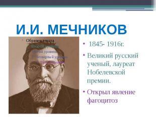 И.И. МЕЧНИКОВ 1845- 1916г. Великий русский ученый, лауреат Нобелевской премии. О