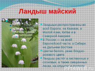 Ландыш майский Ландыши распространены во всей Европе, на Кавказе, в Малой Азии,