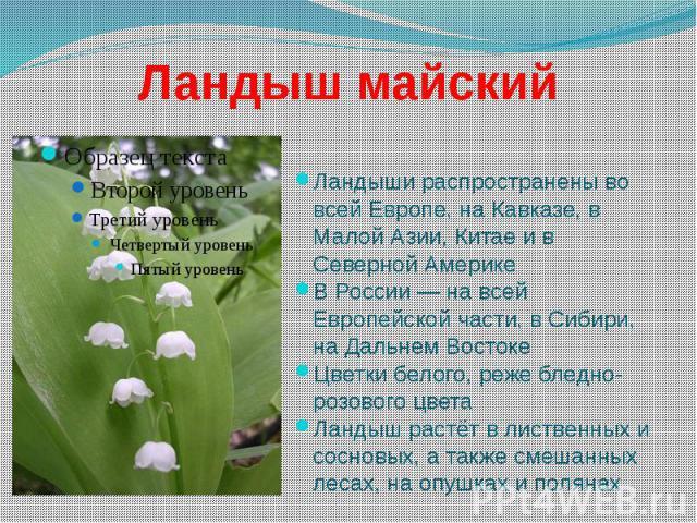 Ландыш майский Ландыши распространены во всей Европе, на Кавказе, в Малой Азии, Китае и в Северной Америке В России — на всей Европейской части, в Сибири, на Дальнем Востоке Цветки белого, реже бледно-розового цвета Ландыш растёт в лиственных и сосн…