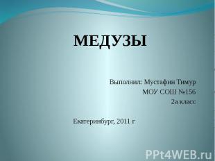 Выполнил: Мустафин Тимур МОУ СОШ №156 2а класс Екатеринбург, 2011 г