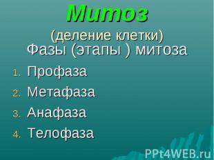 Фазы (этапы ) митоза Фазы (этапы ) митоза Профаза Метафаза Анафаза Телофаза