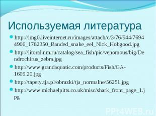 http://img0.liveinternet.ru/images/attach/c/3/76/944/76944906_1782350_Banded_sna