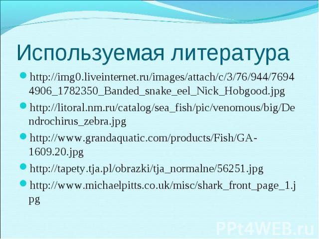 http://img0.liveinternet.ru/images/attach/c/3/76/944/76944906_1782350_Banded_snake_eel_Nick_Hobgood.jpg http://img0.liveinternet.ru/images/attach/c/3/76/944/76944906_1782350_Banded_snake_eel_Nick_Hobgood.jpg http://litoral.nm.ru/catalog/sea_fish/pic…