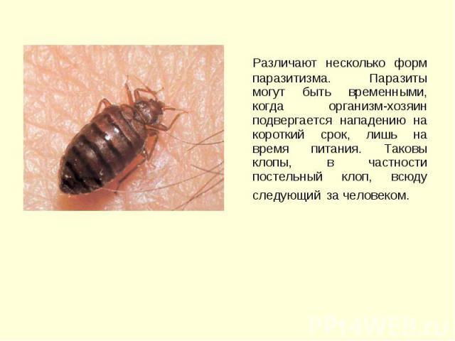 Различают несколько форм паразитизма. Паразиты могут быть временными, когда организм-хозяин подвергается нападению на короткий срок, лишь на время питания. Таковы клопы, в частности постельный клоп, всюду следующий за человеком. Различают несколько …