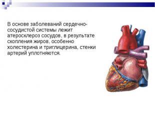 В основе заболеваний сердечно-сосудистой системы лежит атеросклероз сосудов, в р