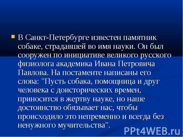 """В Санкт-Петербурге известен памятник собаке, страдавшей во имя науки. Он был сооружен по инициативе великого русского физиолога академика Ивана Петровича Павлова. На постаменте написаны его слова: """"Пусть собака, помощница и друг человека с доис…"""