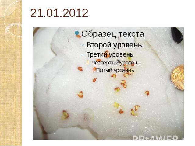 21.01.2012