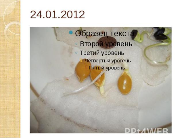 24.01.2012