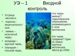 Устрица -моллюск, кораллы - кишечнополостные, пиявка – кольчатый червь, аскарида
