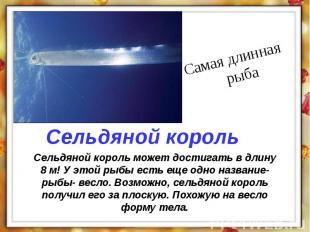 Сельдяной король может достигать в длину 8 м! У этой рыбы есть еще одно название