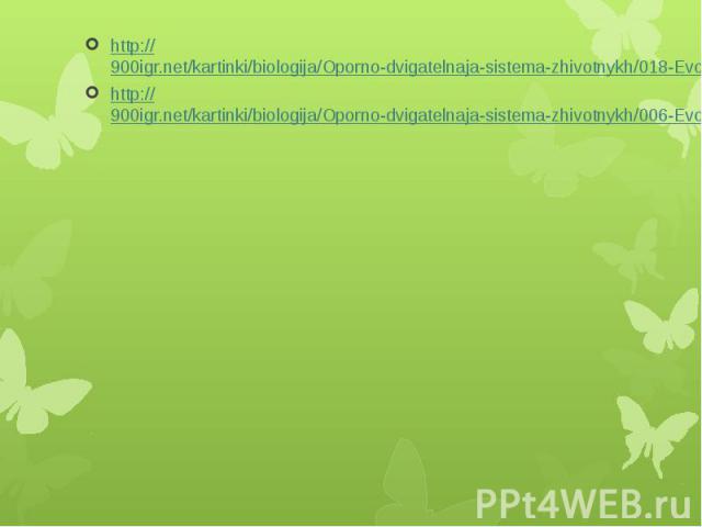 http://900igr.net/kartinki/biologija/Oporno-dvigatelnaja-sistema-zhivotnykh/018-Evoljutsija-ODS-KHordovykh-zhivotnykh.html http://900igr.net/kartinki/biologija/Oporno-dvigatelnaja-sistema-zhivotnykh/018-Evoljutsija-ODS-KHordovykh-zhivotnykh.html htt…