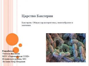 Царство Бактерии Бактерии. Общая характеристика, многообразие и значение