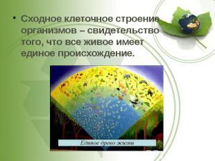 Сходное клеточное строение организмов – свидетельство того, что все живое имеет