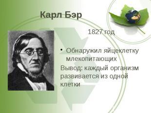 Карл Бэр 1827 год Обнаружил яйцеклетку млекопитающих Вывод: каждый организм разв