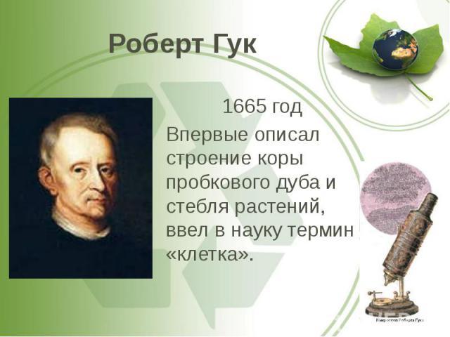 Роберт Гук 1665 год Впервые описал строение коры пробкового дуба и стебля растений, ввел в науку термин «клетка».