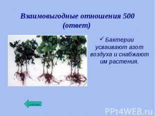 Бактерии усваивают азот воздуха и снабжают им растения. Бактерии усваивают азот