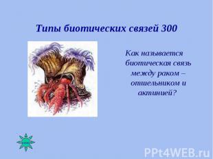 Как называется биотическая связь между раком – отшельником и актинией? Как назыв