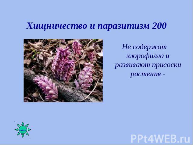 Не содержат хлорофилла и развивают присоски растения - Не содержат хлорофилла и развивают присоски растения -