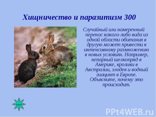 Случайный или намеренный перенос какого-либо вида из одной области обитания в другую может привести к интенсивному размножению в новых условиях. Например, непарный шелкопряд в Америке, кролики в Австралии, элодея и водный гиацинт в Европе. Объясните…