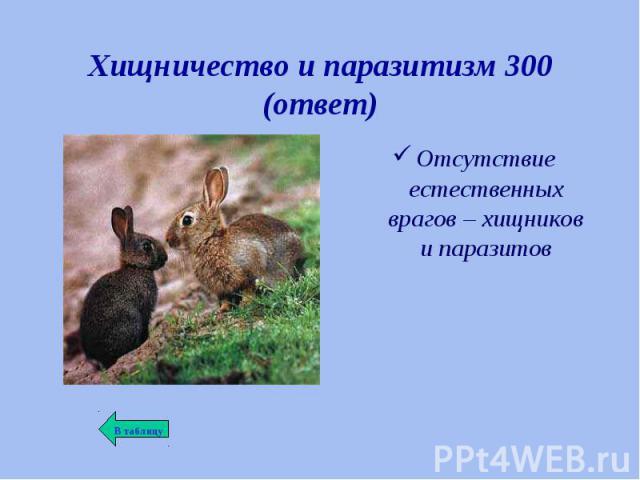 Отсутствие естественных врагов – хищников и паразитов Отсутствие естественных врагов – хищников и паразитов