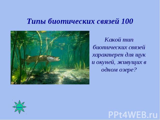 Какой тип биотических связей характерен для щук и окуней, живущих в одном озере? Какой тип биотических связей характерен для щук и окуней, живущих в одном озере?