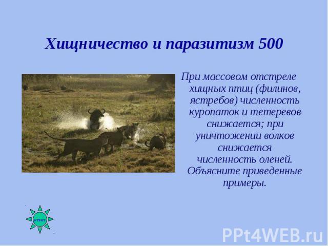 При массовом отстреле хищных птиц (филинов, ястребов) численность куропаток и тетеревов снижается; при уничтожении волков снижается численность оленей. Объясните приведенные примеры. При массовом отстреле хищных птиц (филинов, ястребов) численность …