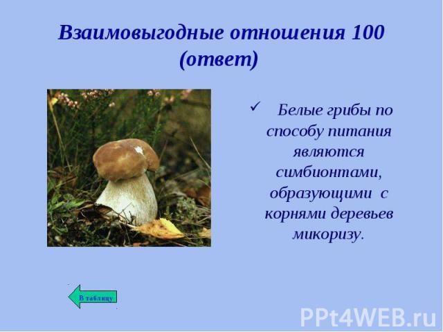 Белые грибы по способу питания являются симбионтами, образующими с корнями деревьев микоризу. Белые грибы по способу питания являются симбионтами, образующими с корнями деревьев микоризу.