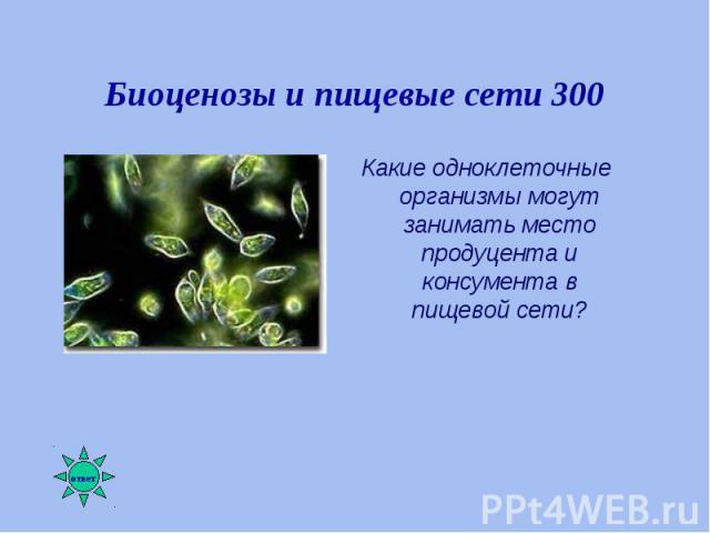 Какие одноклеточные организмы могут занимать место продуцента и консумента в пищевой сети? Какие одноклеточные организмы могут занимать место продуцента и консумента в пищевой сети?