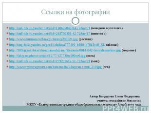 Ссылки на фотографии http://im6-tub-ru.yandex.net/i?id=160636040-04-72&n=21
