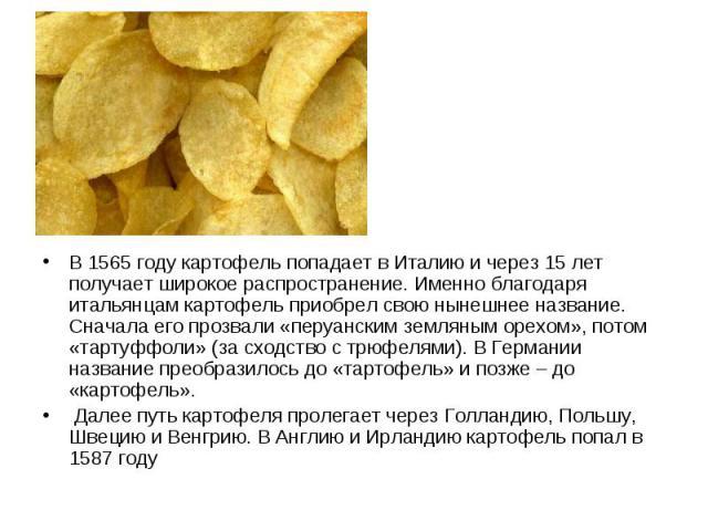 В 1565 году картофель попадает в Италию и через 15 лет получает широкое распространение. Именно благодаря итальянцам картофель приобрел свою нынешнее название. Сначала его прозвали «перуанским земляным орехом», потом «тартуффоли» (за сходство с трюф…