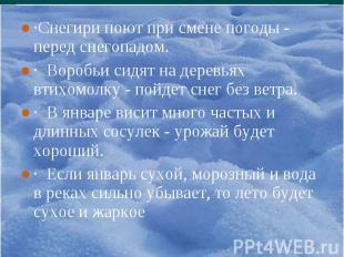 ·Снегири поют при смене погоды - перед снегопадом. ·Снегири поют при смене погод