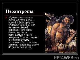 Неоантропы (буквально — новые люди, от греч. néos — новый и ánthropos — человек)