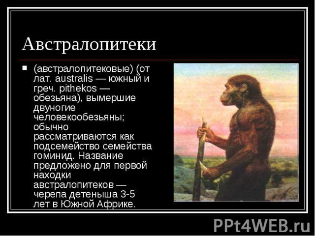 Австралопитеки (австралопитековые) (от лат. australis — южный и греч. pithekos — обезьяна), вымершие двуногие человекообезьяны; обычно рассматриваются как подсемейство семейства гоминид. Название предложено для первой находки австралопитеков — череп…