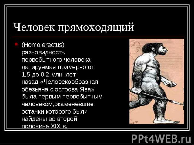 Человек прямоходящий (Homo erectus), разновидность первобытного человека датируемая примерно от 1,5 до 0,2 млн. лет назад.«Человекообразная обезьяна с острова Ява» была первым первобытным человеком,окаменевшие останки которого были найдены во второй…