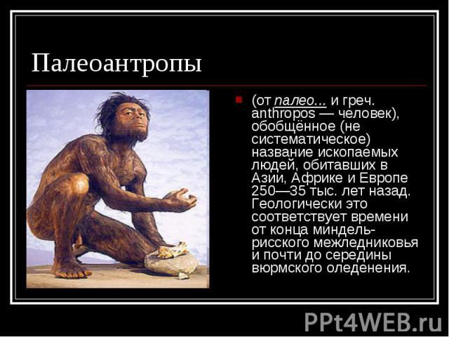 Палеоантропы (от палео... и греч. anthropos — человек), обобщённое (не систематическое) название ископаемых людей, обитавших в Азии, Африке и Европе 250—35 тыс. лет назад. Геологически это соответствует времени от конца миндель-рисского межледниковь…