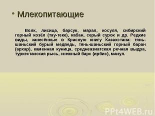 Волк, лисица, барсук, марал, косуля, сибирский горный козёл (тау-теке), кабан, с