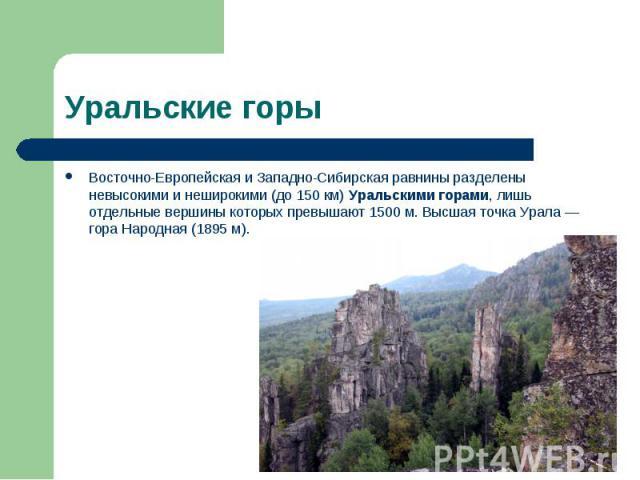 Восточно-Европейская и Западно-Сибирская равнины разделены невысокими и неширокими (до 150 км) Уральскими горами, лишь отдельные вершины которых превышают 1500 м. Высшая точка Урала — гора Народная (1895 м). Восточно-Европейская и Западно-Сибирская …