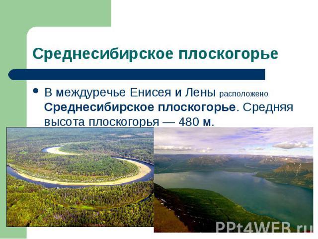 В междуречье Енисея и Лены расположено Среднесибирское плоскогорье. Средняя высота плоскогорья — 480 м. В междуречье Енисея и Лены расположено Среднесибирское плоскогорье. Средняя высота плоскогорья — 480 м.