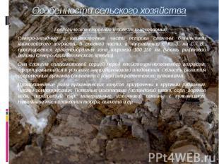 Особенности сельского хозяйства Геологическое строение и полезные ископаемые. Се