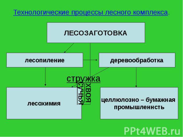 Технологические процессы лесного комплекса.