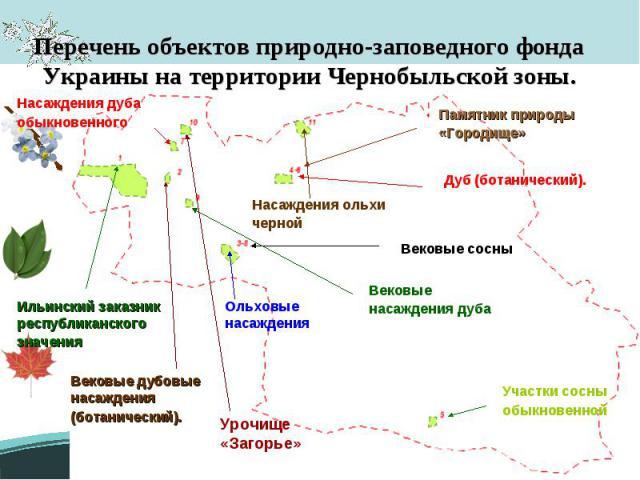 Перечень объектов природно-заповедного фонда Украины на территории Чернобыльской зоны.