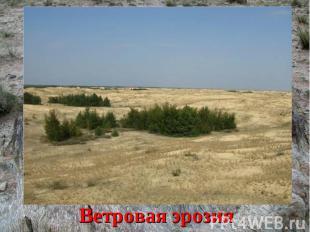 Что может уничтожить плодородные почвы?