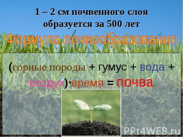 1 – 2 см почвенного слоя образуется за 500 лет